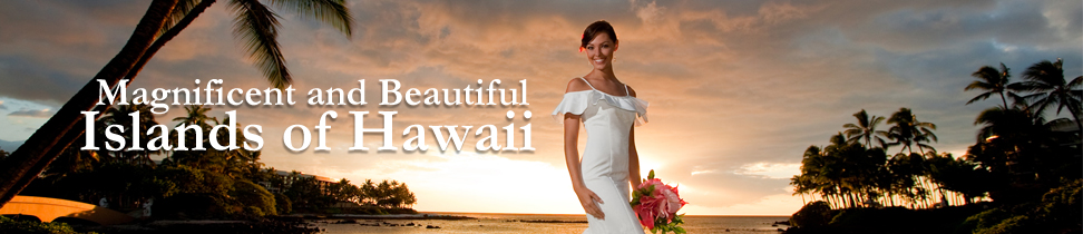 brides-choice-hawaii-inner-banner-romance-in-hawaii-02